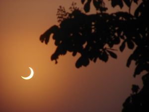 pictures of solar eclipse