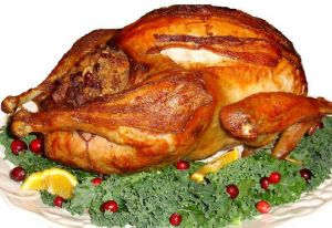 Picture of a Christmas Turkey