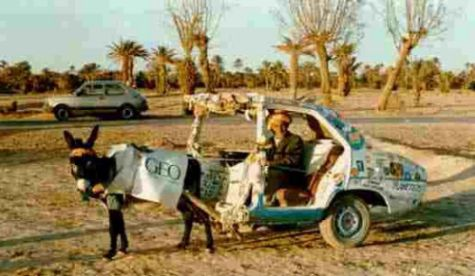 Funny Pictures of Geo Storm Model - Donkey Pulling Car