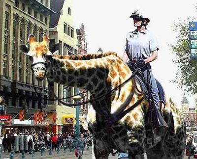 Funny Pictures of Police Officer on Giraffe