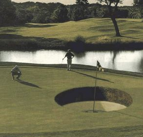 Funny Pictures of Golfer Putting For Huge Hole