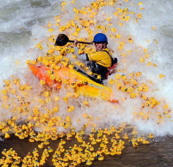 rubber duck race go bigger