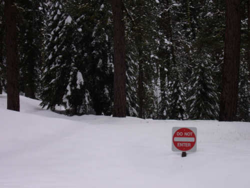 Funny Pictures of Do Not Enter Sign
