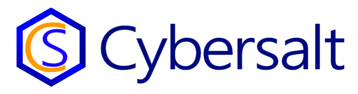 The new Cybersalt.com Logo