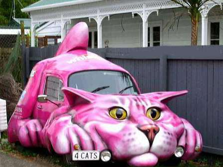 Funny Pictures of Purple Cat Car