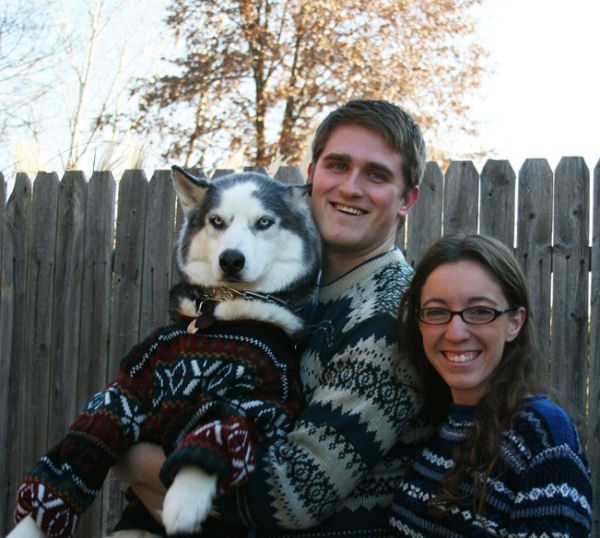 A funny husky dog pictures