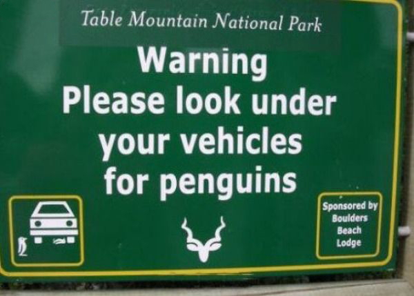 A funny Penguin Sign